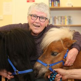 Therapy ponies bring cheer to older customers